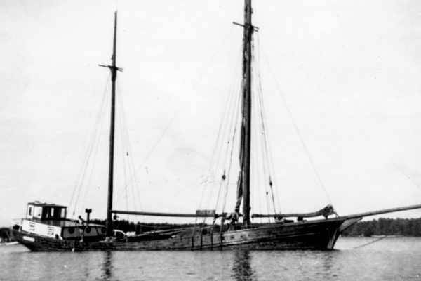 Prima_Shipping_history_0006
